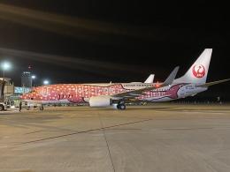 ユターさんが、新石垣空港で撮影した日本トランスオーシャン航空 737-8Q3の航空フォト(飛行機 写真・画像)