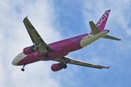 ユターさんが、新石垣空港で撮影したピーチ A320-214の航空フォト(飛行機 写真・画像)