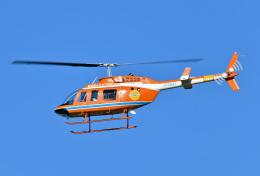 鈴鹿@風さんが、名古屋飛行場で撮影した新日本ヘリコプター 206L-3 LongRanger IIIの航空フォト(飛行機 写真・画像)