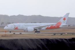 maverickさんが、松島基地で撮影した日本航空 787-8 Dreamlinerの航空フォト(飛行機 写真・画像)