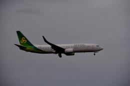アルビレオさんが、成田国際空港で撮影した春秋航空日本 737-8ALの航空フォト(飛行機 写真・画像)