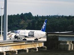 DVDさんが、成田国際空港で撮影した全日空 787-9の航空フォト(飛行機 写真・画像)
