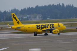 かみじょー。さんが、シアトル タコマ国際空港で撮影したスピリット航空 A320-232の航空フォト(飛行機 写真・画像)