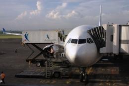 Hiro-hiroさんが、デンパサール国際空港で撮影したガルーダ・インドネシア航空 A330-341の航空フォト(飛行機 写真・画像)