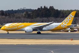 KoshiTomoさんが、成田国際空港で撮影したスクート 787-8 Dreamlinerの航空フォト(飛行機 写真・画像)