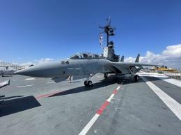 小弦さんが、USS Lexingtonで撮影したアメリカ海軍 F-14A Tomcatの航空フォト(飛行機 写真・画像)
