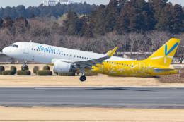 KoshiTomoさんが、成田国際空港で撮影したバニラエア A320-214の航空フォト(飛行機 写真・画像)