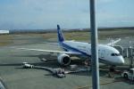 トレインさんが、新千歳空港で撮影した全日空 787-8 Dreamlinerの航空フォト(飛行機 写真・画像)