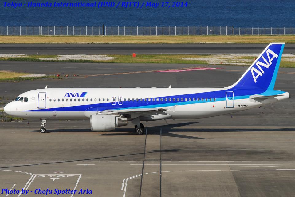 Chofu Spotter Ariaさんの全日空 Airbus A320 (JA8313) 航空フォト