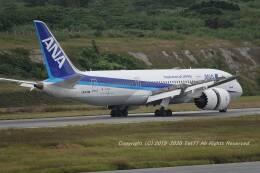 tet77さんが、新石垣空港で撮影した全日空 787-8 Dreamlinerの航空フォト(飛行機 写真・画像)