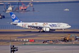 apphgさんが、羽田空港で撮影した日本エアシステム A300B2K-3Cの航空フォト(飛行機 写真・画像)