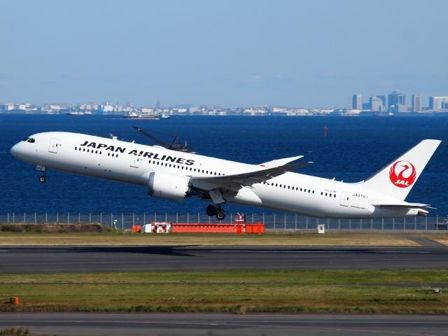 航空フォト:JA879J 日本航空