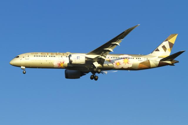 航空フォト:A6-BLS エティハド航空 787-9