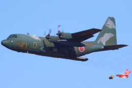 CYGNUS_20-1101さんが、米子空港で撮影した航空自衛隊 C-130H Herculesの航空フォト(飛行機 写真・画像)