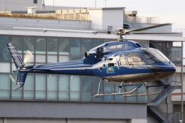 きりしまさんが、東京ヘリポートで撮影した三井住友ファイナンス&リース AS355N Ecureuil 2の航空フォト(飛行機 写真・画像)