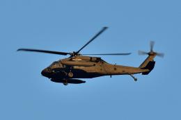 NFファンさんが、厚木飛行場で撮影したアメリカ陸軍 UH-60L Black Hawk (S-70A)の航空フォト(飛行機 写真・画像)