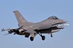 キャスバルさんが、ルーク空軍基地で撮影したアメリカ空軍 - United States Air Force F-16CG Night Falconの航空フォト(飛行機 写真・画像)