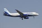 BTYUTAさんが、インディラ・ガンディー国際空港で撮影したインディゴ A320-232の航空フォト(飛行機 写真・画像)