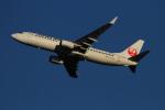 twining07さんが、羽田空港で撮影した日本航空 737-846の航空フォト(飛行機 写真・画像)