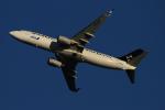 twining07さんが、羽田空港で撮影した全日空 737-881の航空フォト(飛行機 写真・画像)