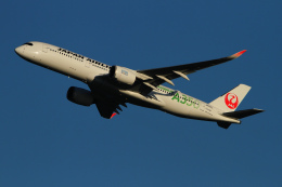 twining07さんが、羽田空港で撮影した日本航空 A350-941の航空フォト(飛行機 写真・画像)