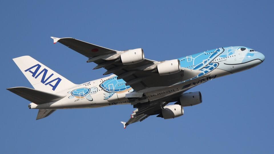 redbull_23さんの全日空 Airbus A380 (JA381A) 航空フォト