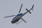 kanadeさんが、東京ヘリポートで撮影したエクセル航空 AS355N Ecureuil 2の航空フォト(写真)