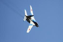 logicさんが、入間飛行場で撮影した航空自衛隊 T-4の航空フォト(飛行機 写真・画像)