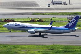 航空フォト:JA52AN 全日空 737-800