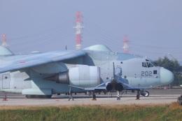 ぼのさんが、入間飛行場で撮影した航空自衛隊 XC-2の航空フォト(飛行機 写真・画像)