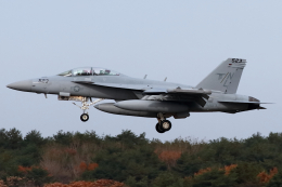 Hariboさんが、三沢飛行場で撮影したアメリカ海軍 EA-18G Growlerの航空フォト(飛行機 写真・画像)