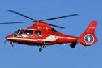 ブルーさんさんが、名古屋飛行場で撮影した名古屋市消防航空隊 AS365N3 Dauphin 2の航空フォト(飛行機 写真・画像)