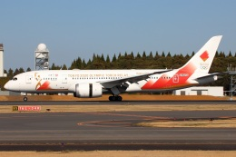 たみぃさんが、成田国際空港で撮影した日本航空 787-8 Dreamlinerの航空フォト(飛行機 写真・画像)