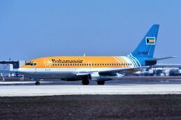 パール大山さんが、マイアミ国際空港で撮影したバハマスエア 737-2V5/Advの航空フォト(飛行機 写真・画像)