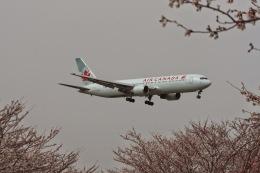 ゆう.さんが、成田国際空港で撮影したエア・カナダ 767-375/ERの航空フォト(飛行機 写真・画像)