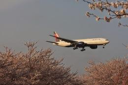 ゆう.さんが、成田国際空港で撮影したデルタ航空 777-232/ERの航空フォト(飛行機 写真・画像)