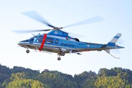 apphgさんが、静岡ヘリポートで撮影した静岡県警察 A109E Powerの航空フォト(飛行機 写真・画像)