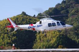 apphgさんが、静岡ヘリポートで撮影した静岡エアコミュータ AW109SP GrandNewの航空フォト(飛行機 写真・画像)