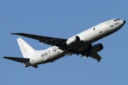 Hariboさんが、三沢飛行場で撮影したアメリカ海軍 P-8A (737-8FV)の航空フォト(飛行機 写真・画像)