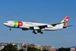 Frankspotterさんが、リスボン・ウンベルト・デルガード空港で撮影したTAPポルトガル航空 A340-312の航空フォト(飛行機 写真・画像)