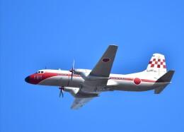 かたつむりくんさんが、松島基地で撮影した航空自衛隊 YS-11-103FCの航空フォト(飛行機 写真・画像)