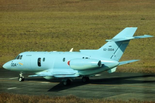 レドームさんが、浜松基地で撮影した航空自衛隊 U-125A(Hawker 800)の航空フォト(飛行機 写真・画像)