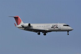 kumagorouさんが、仙台空港で撮影したジェイエア CL-600-2B19 Regional Jet CRJ-200ERの航空フォト(飛行機 写真・画像)
