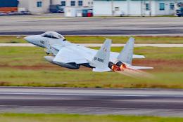 航空フォト:32-8080 航空自衛隊 F-15DJ Eagle