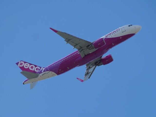 Gibbsさんが、宮崎空港で撮影したバニラエア A320-214の航空フォト(飛行機 写真・画像)