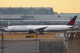 mameshibaさんが、羽田空港で撮影したエア・カナダ 777-333/ERの航空フォト(飛行機 写真・画像)