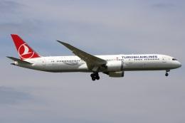 たみぃさんが、成田国際空港で撮影したターキッシュ・エアラインズ 787-9の航空フォト(飛行機 写真・画像)