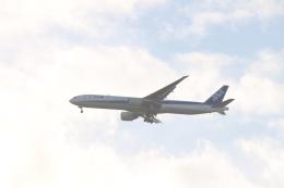デルさんが、羽田空港で撮影した全日空 777-381/ERの航空フォト(飛行機 写真・画像)