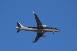 デルさんが、羽田空港で撮影したスターフライヤー A320-214の航空フォト(飛行機 写真・画像)