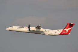 安芸あすかさんが、シドニー国際空港で撮影したサンステート・エアラインズ DHC-8-402Q Dash 8の航空フォト(飛行機 写真・画像)
